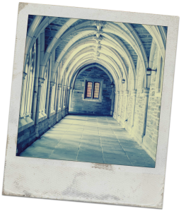 Abbey Polaroid Blank
