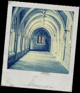 Abbey Polaroid Blank